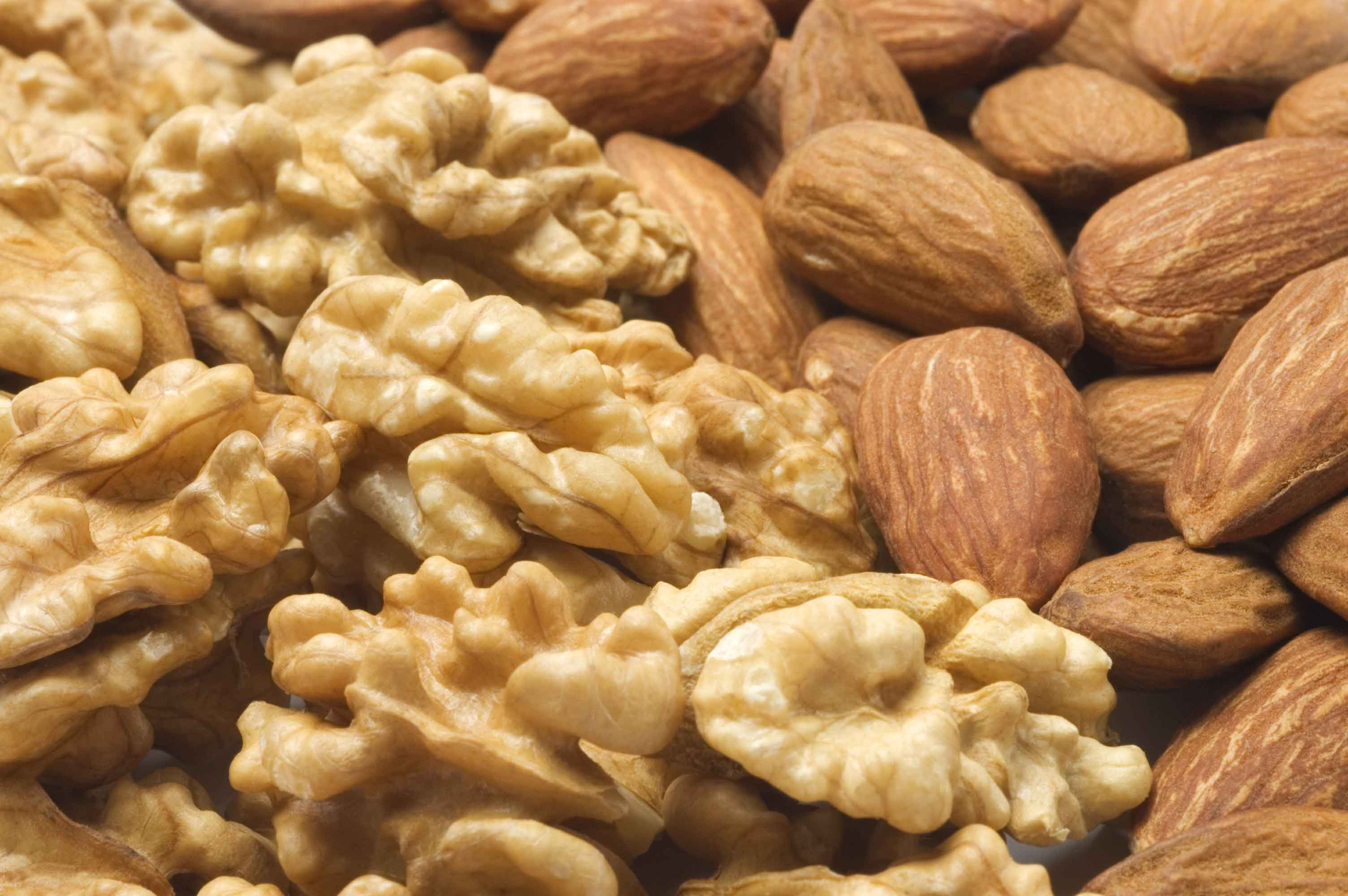 fsma preventative control for the nut industry