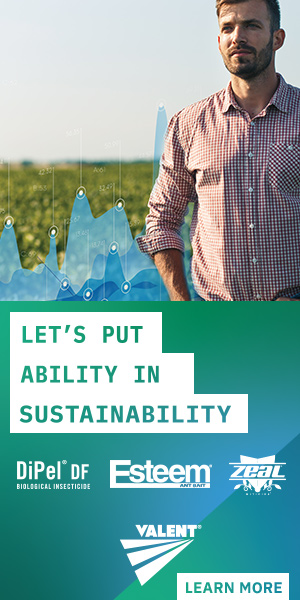 Let's Put Ability in Sustainability - Valent