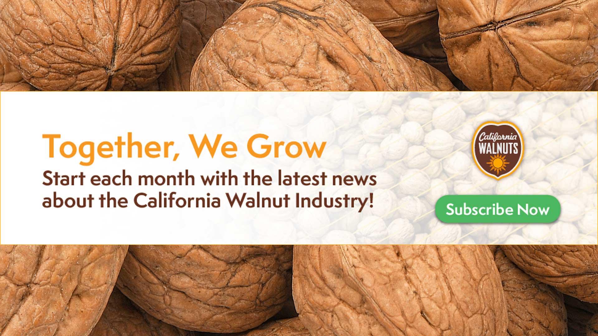 WalnutBoard-Takeover